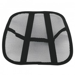 Cool Mesh Back Support